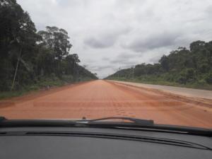W drodze do Novo Airão